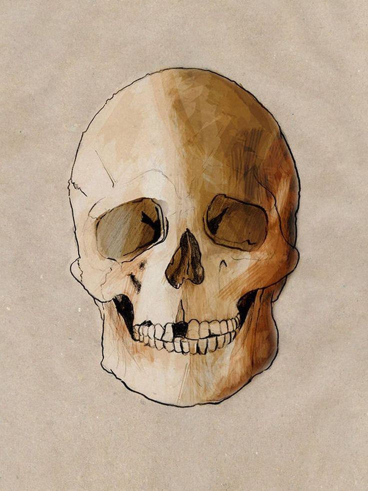 Scientific Illustration | lucienballard: La Brana 1 An artist's impression...