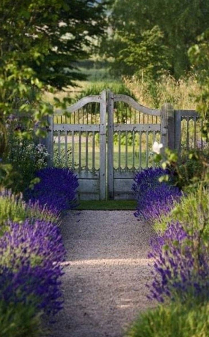 Gate Designs with Wooden Material: Appealing White Garden Wood Gate Designs With Walkway And Side Purple Flowers ~ boholmain.com Doors Inspiration