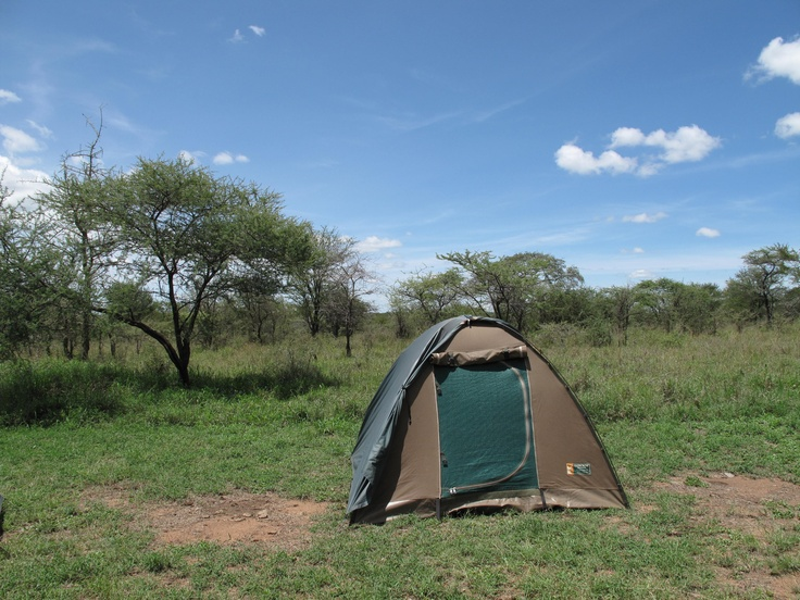 my home in the Serengeti