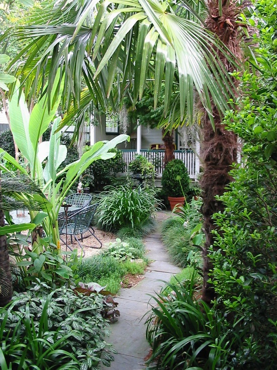 tropical landscape tropical design pictures remodel decor and ideas page 3 - Tropical Garden 2016