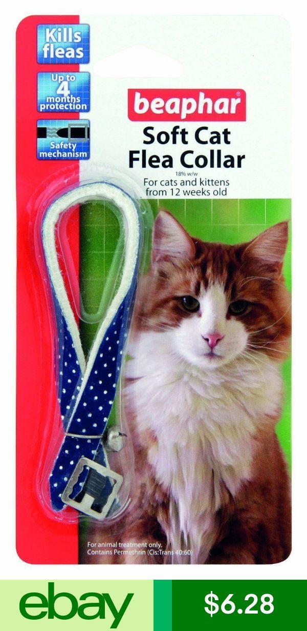 Beaphar Pet Flea Tick Remedies Ebay Pet Supplies Cat Fleas Fleas Cats Kittens