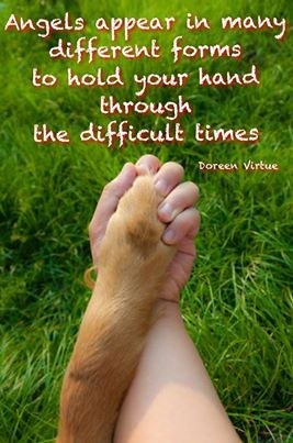 Angels appear in many different forms to hold your hand through the difficult times. --Doreen Virtue