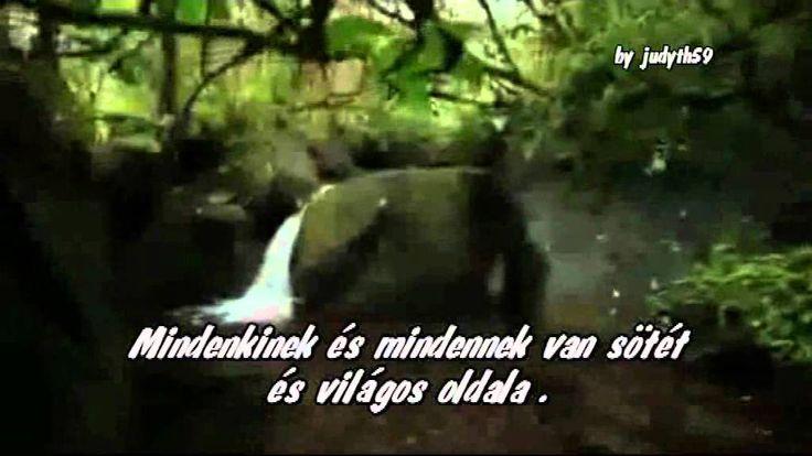 A Föld dala // A FÖLD NAPJA ( Beautiful song )