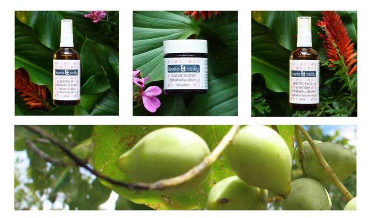The benefits of beautiful Kakadu Plum Skin Care.
