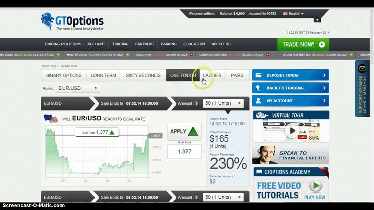 Binary options 101 review