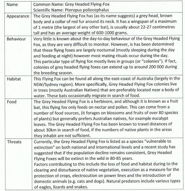 Grey Headed Flying Fox!!!: Activity 2 - Creature Profile