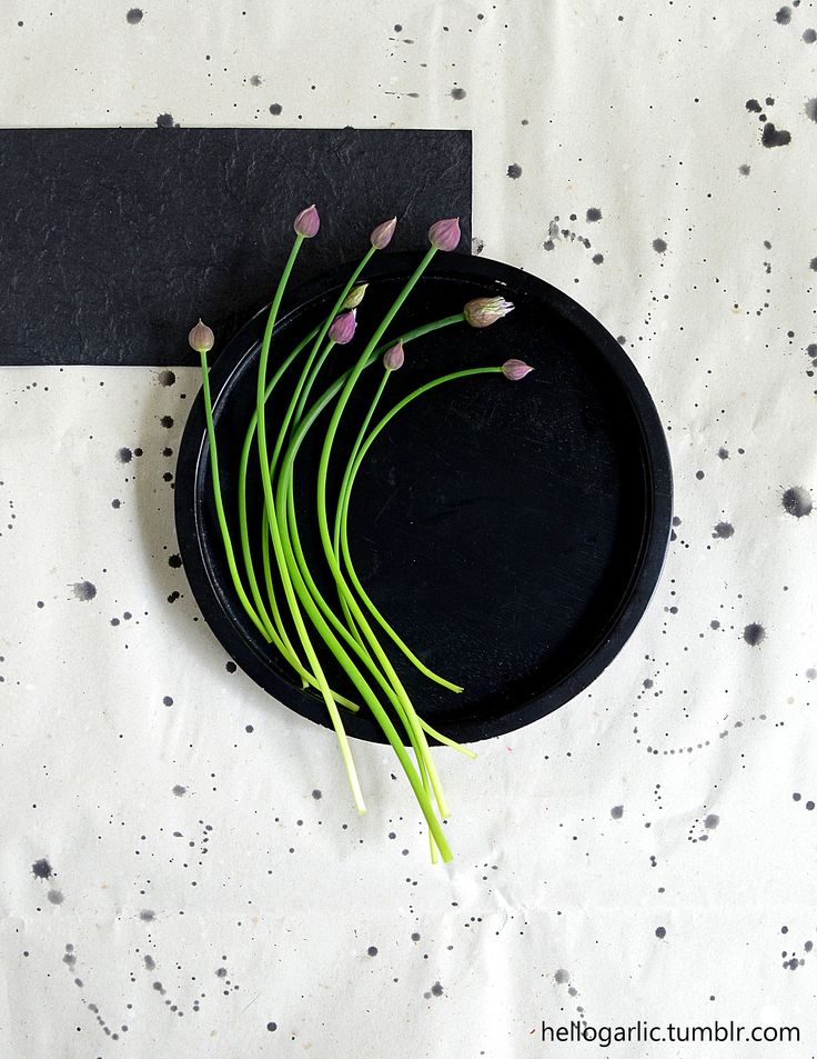 hello blooming chives! photo & styling by Panka Milutinovits - hello garlic