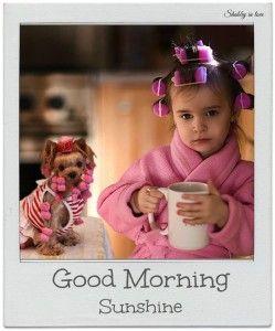 Cute Good Morning Memes 1 Wallpapers Instagram