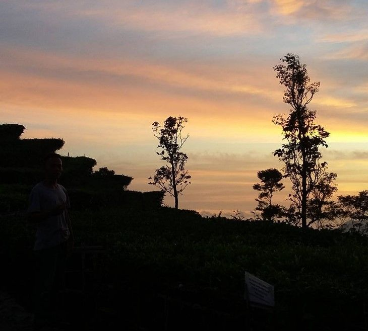 Pesona Desa Wisata Nglinggo Pagerharjo Samigaluh Kulon Progo. Di Kulonprogo ada…