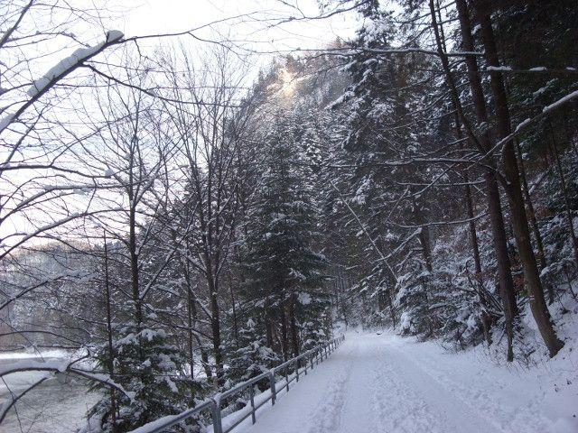 Szczawnica droga pienińska zimą