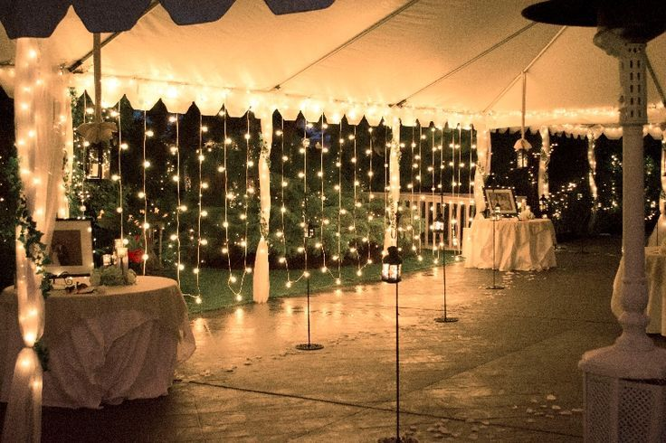 vertical fairy lights wedding - Google Search