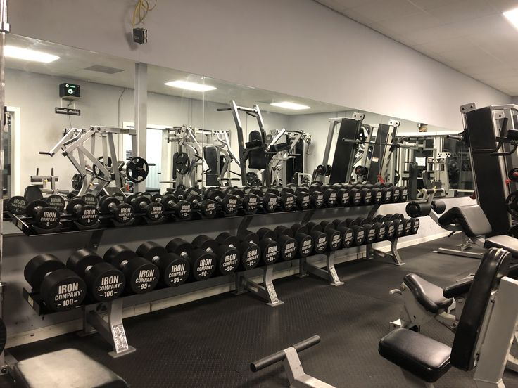 Pin On Free Weight Equipment