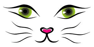 Vector line drawing cat face