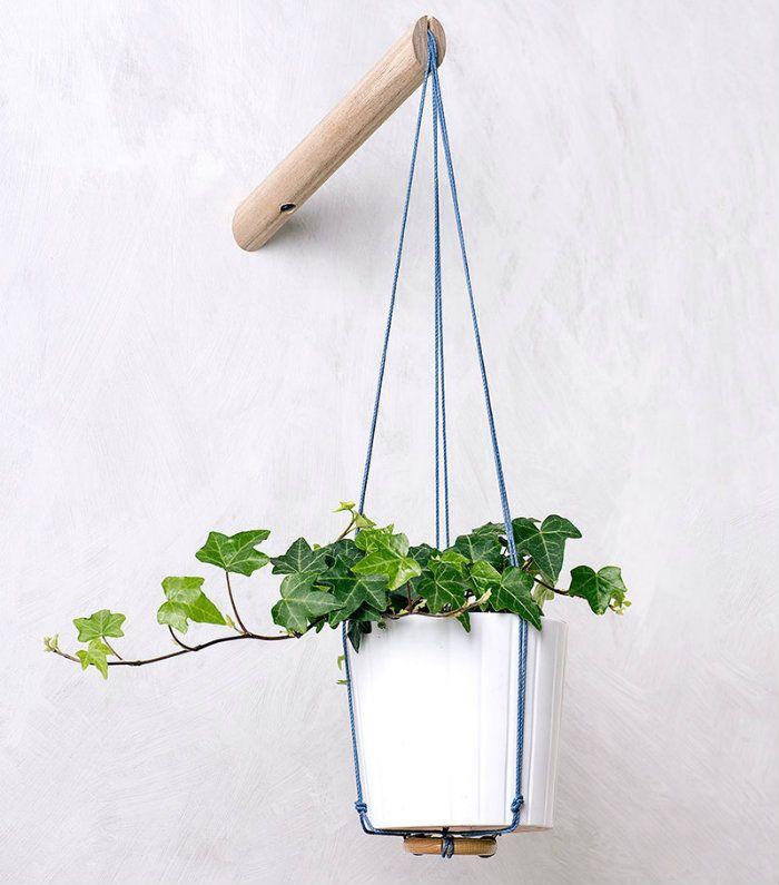 Κισσός και αναρριχητικά: η νέα τρέλα στα φυτά εσωτερικού χώρου!  #diakosmisi #minimal #αναρριχητικαφυτα #διακόσμηση #έμπνευση #ιδέες #ιδεεςδιακοσμησης #κηπουρικη #κισσος #μοντέρνο #πρασινο #σπιτι #φυτά #φυταεσωτερικουχώρου