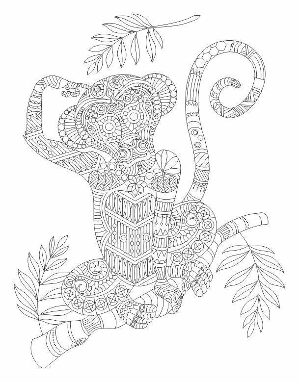 Colouring For Adult Suggestions : 523 best adult coloring pages images on pinterest