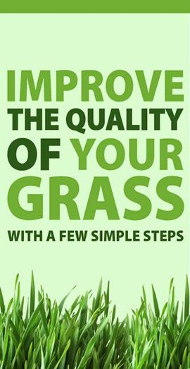 Use this guide to improve the quality of your grass quickly and easily!