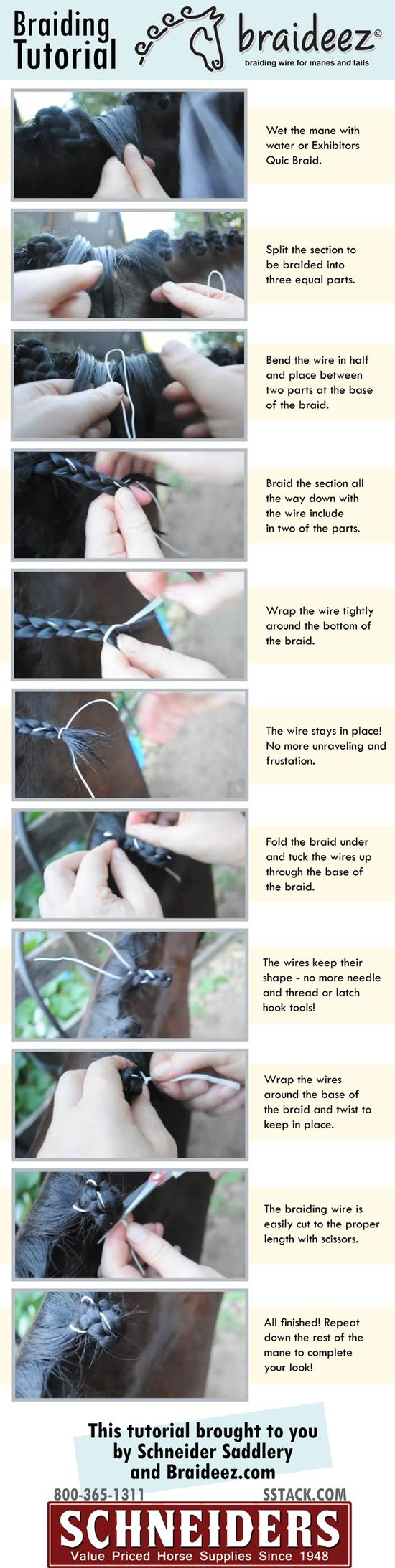 braideez braiding tutorial | horse show week Maybe I can pick up some tips on keeping braids even in height.  I can get them even in size, but can never get the perfect, neat height that makes such a beautiful appearance.