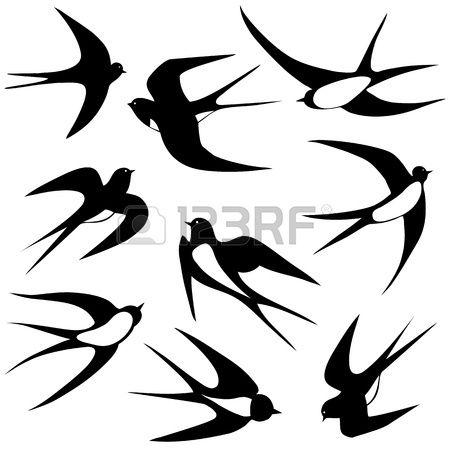 Illustration oiseau hirondelle poses ensemble isolé sur blanc