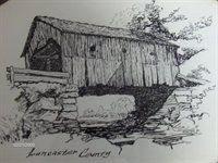 Pen and Ink Drawing