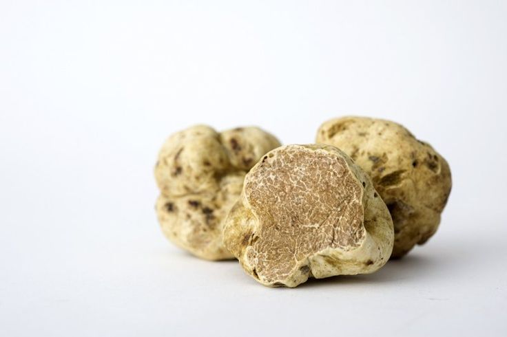 White truffles can be found in the Piedmont region of Italy.