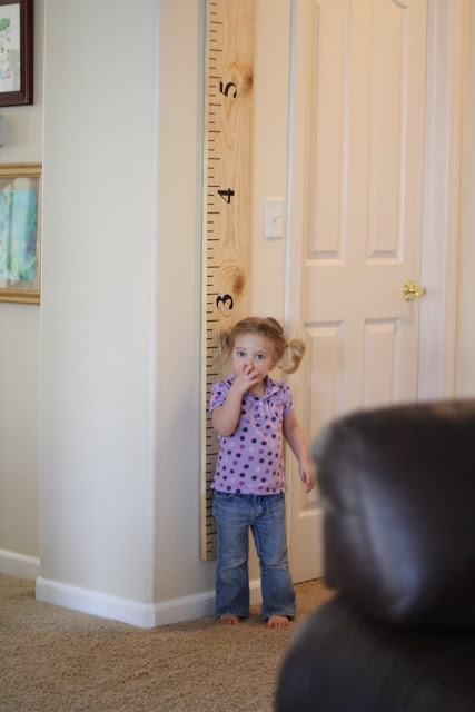 Giant ruler growth chart - tutorial