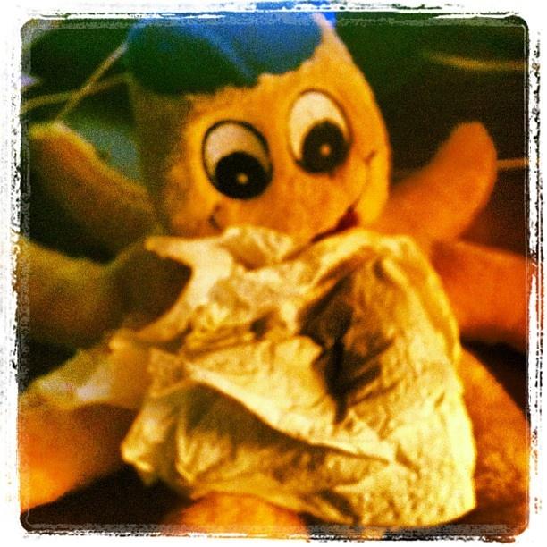"""@oltreilpassaparola's photo: """"Oggi Otto ha il raffreddore, ma vi augura buona giornata comunque"""""""