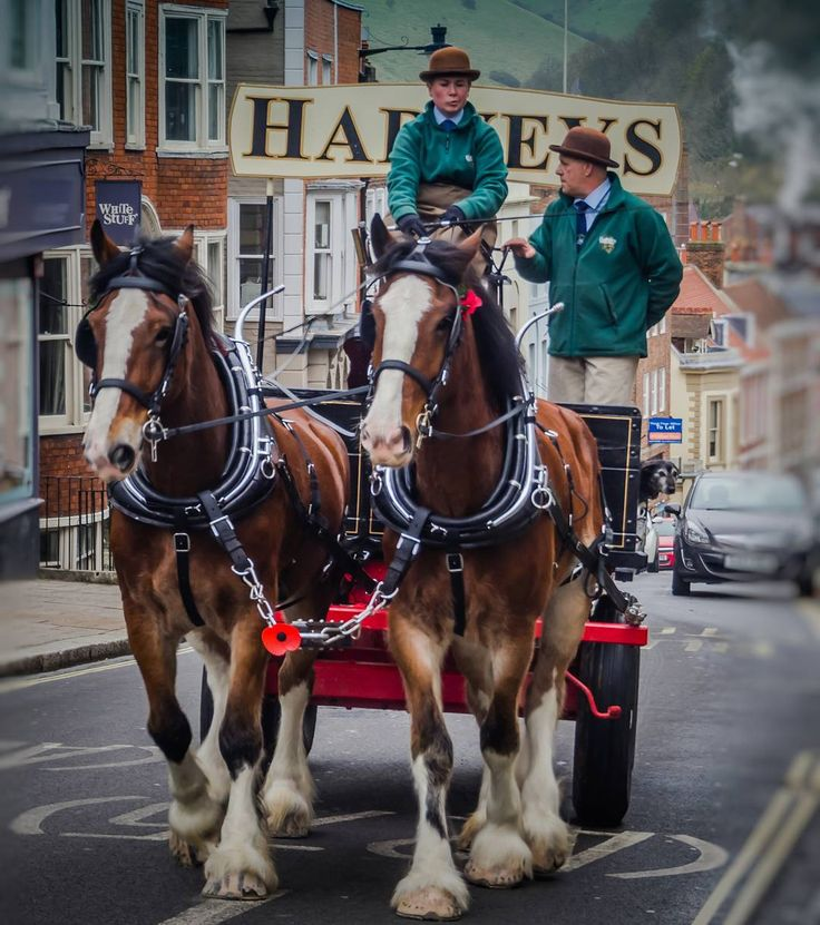 You certainly don't see this in every town. This is in Lewes where @Harveys1790 deliver barrels to the local Harveys pub using their drays. @olympusuk  #Lewes #Sussex #HarveysBrewery #EastSussex #Olympus #Lightroom #OlympusOMD #mybritisholympus