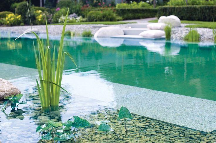 naturpool oder schwimmteich mit biologischer natuerlicher wasserreinigung 22 schwimmteich. Black Bedroom Furniture Sets. Home Design Ideas