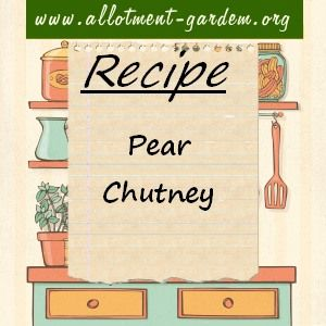 Recipe for Pear Chutney. Makes about 4 lb (1.8 kg) of Pear Chutney. Wonderful for using up pears that have just gone over ripeness for eating