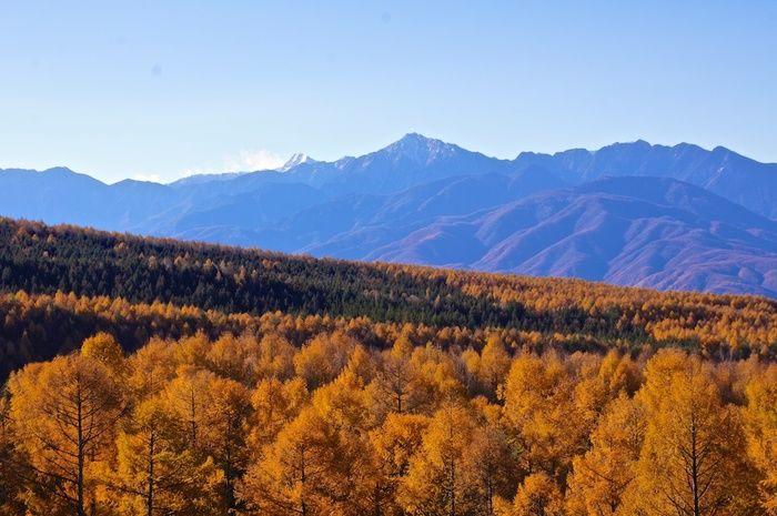 長野・山梨両県にまたがる「八ヶ岳」