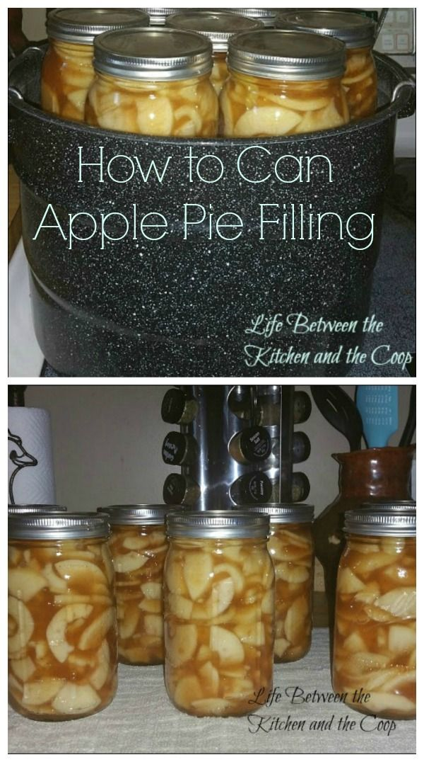 Have you ever looked at the beautiful jars of canned fruit in someone else's food storage and wished you knew how to do that?  I know I did…until I learned an EASY way to can Apple Pie Filling—and you won't believe just how easy it is!  The thing that I love about doing this is not only can you throw it in a pie shell for an easy holiday dessert or make Apple Dump Cake a la Mode in a jiffy!  CLICK THROUGH NOW to learn how!