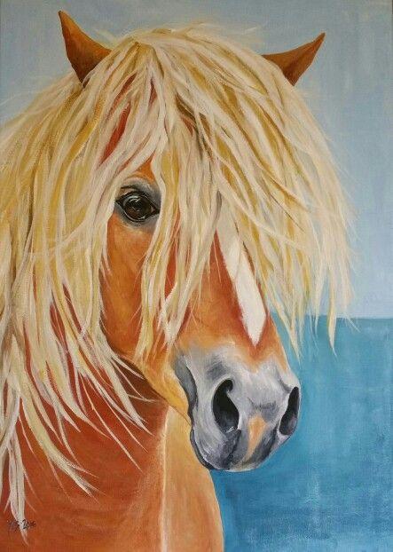 Horse   50x70cm Acrylic on canvas