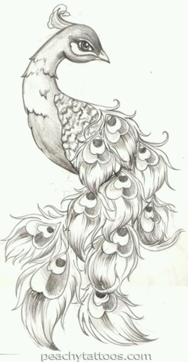 Een creative tekening van een pauw. Prachtig wie deze tekening heeft gemaakt moet wel heel veel inspiratie's hebben .