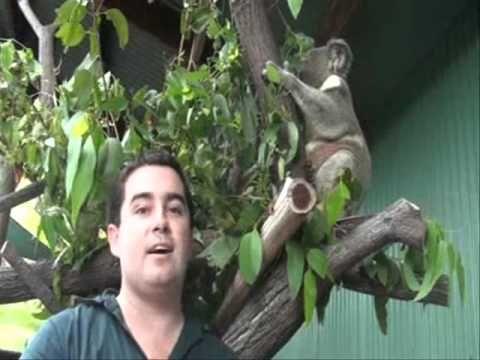 Wildlife Habitat - Port Douglas Wildlife Park in North Queensland