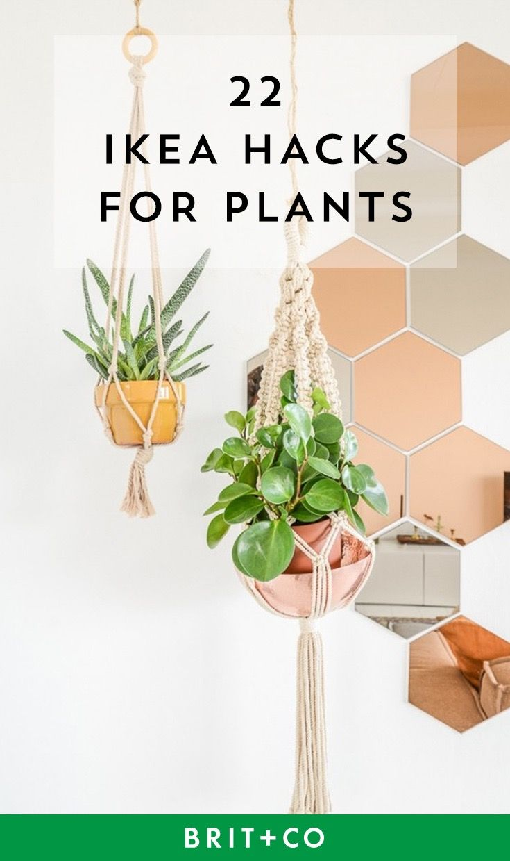 The 25 best ikea plants ideas on pinterest ikea for Garden design hacks