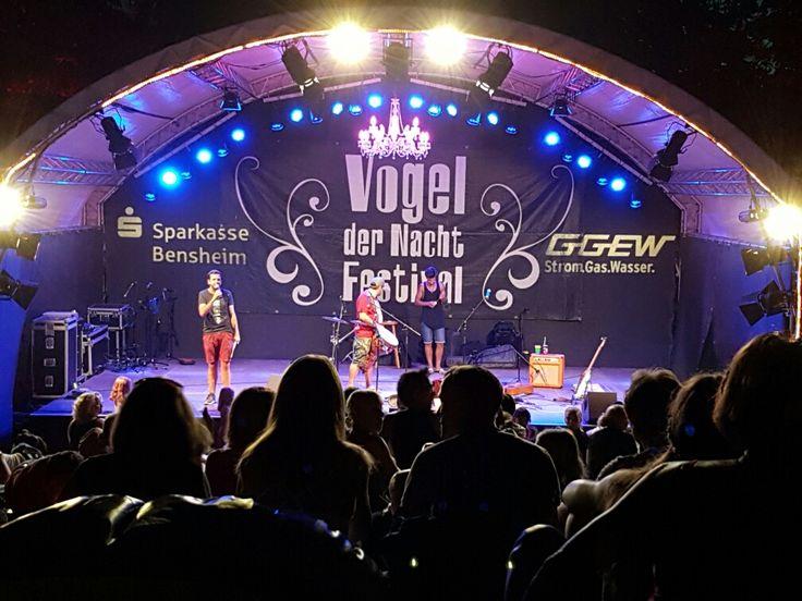 Vogel der Nacht Festival 2016