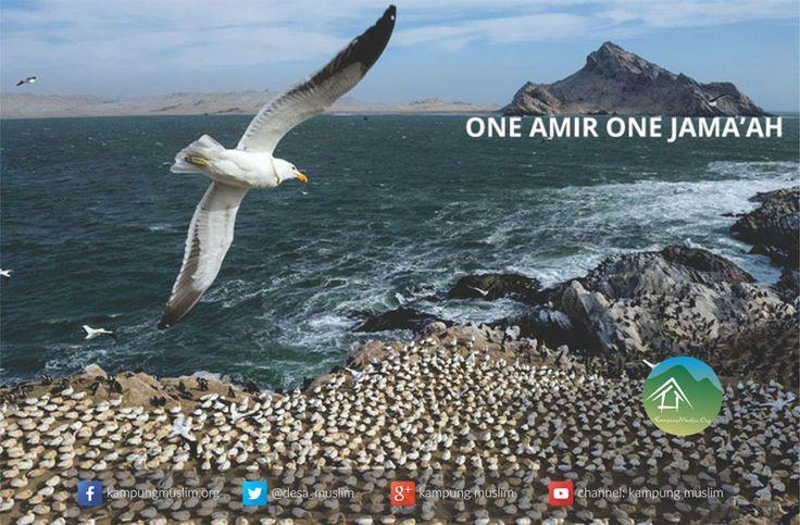One Amiir One Jama'ah