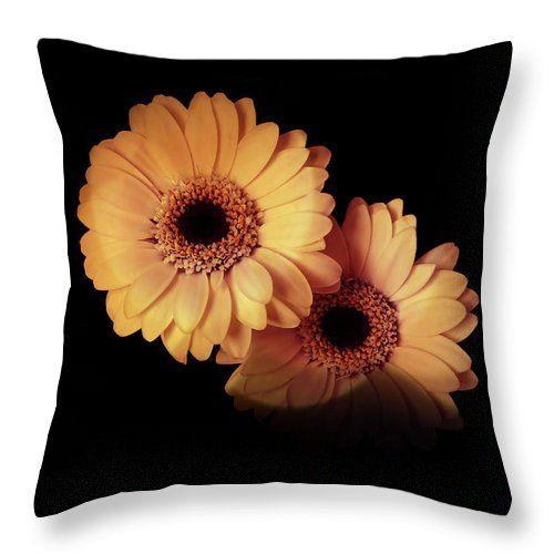 Wonderful gerbera #pillow