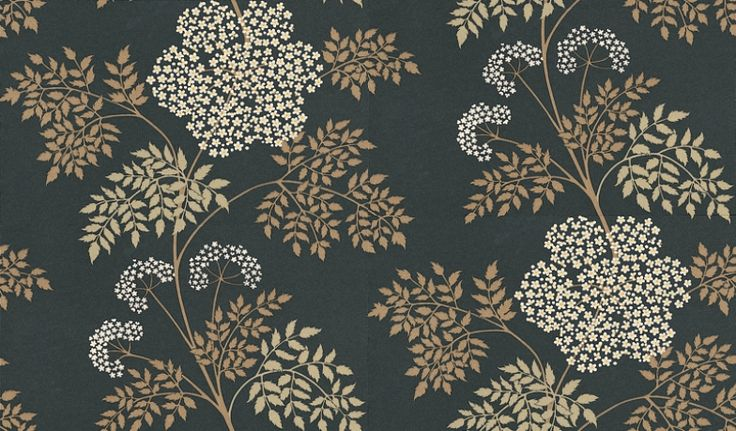 Cowparsley (DOPWCO101) - Sanderson Wallpapers - A delicate, romantic design with tiny jewel-like flowers layered with lacy ferns. Available in 6 colours – shown with creams and brown on dark charcoal. Please ask for a sample for true colour match.
