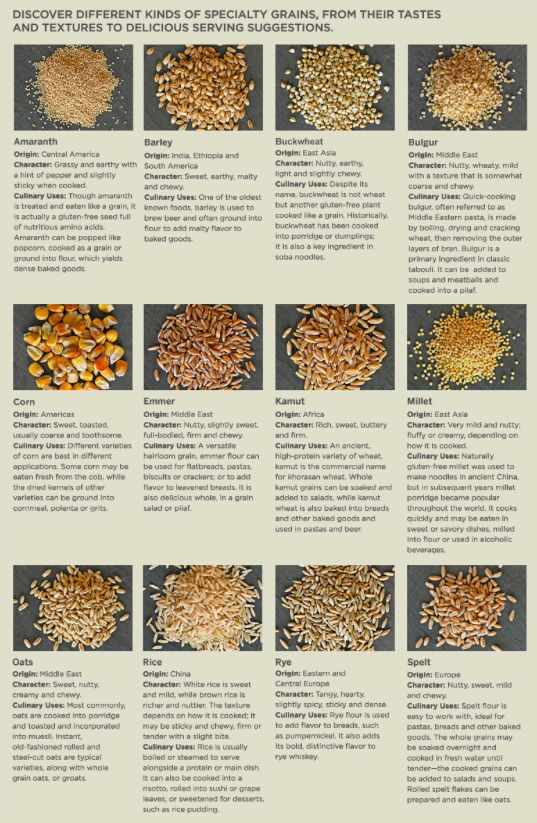 Williams-Sonoma Guide to Grains
