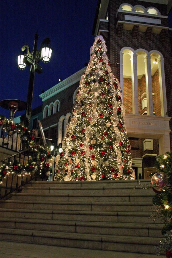 297 Best Christmas Trees Images On Pinterest Xmas Trees  - Location Of Christmas Trees