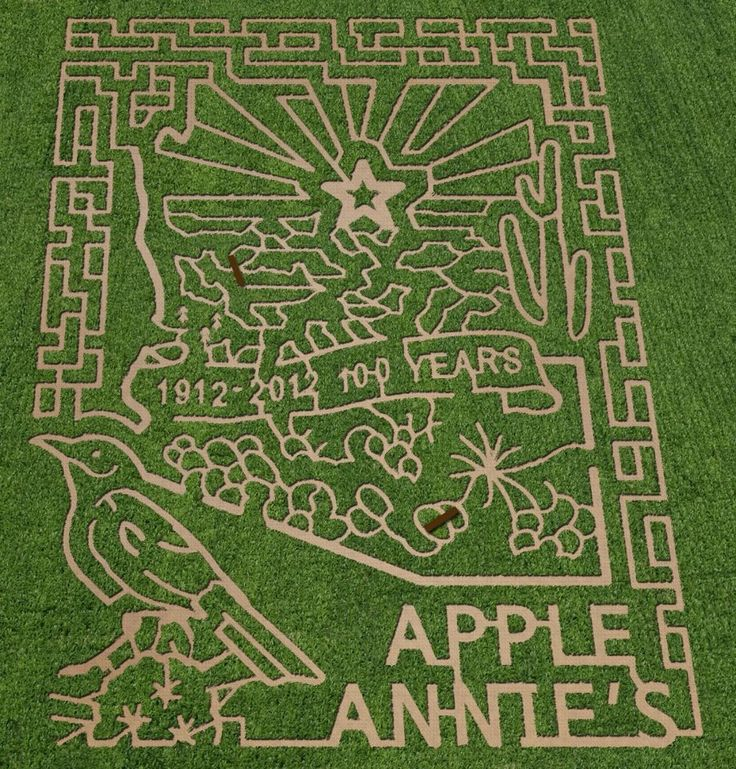 Apple Annies 2012 Corn Maze, Willcox, Arizona Absolutely LOVE Apple Annies!  They even make Gluten Free pies now too!
