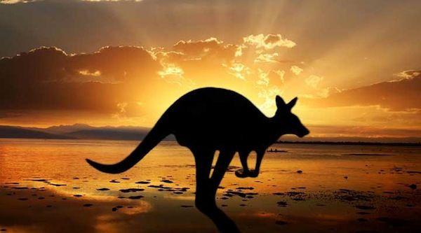 ¿ Quedarse en España o emigrar a Australia ? Sydney un año después