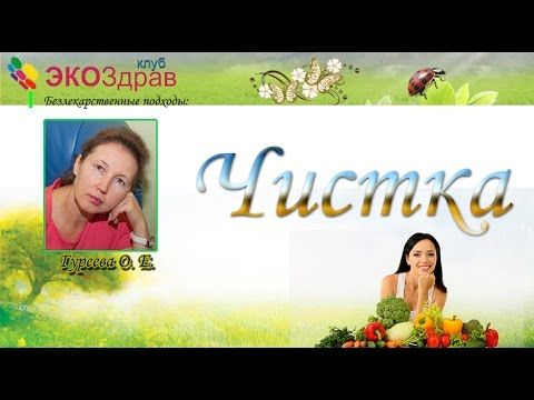 Гуреева Ольга - Очищение организма- Путь к исцелению - YouTube