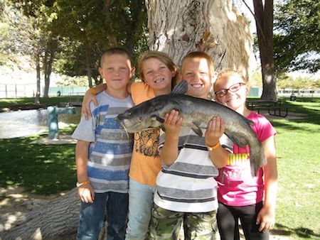 This 8 pound catfish was the biggest fish on hesperia lake for Hesperia lake fishing report