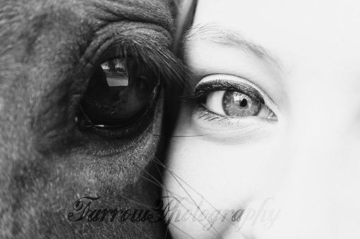I love horses eyes they are so beautiful!!