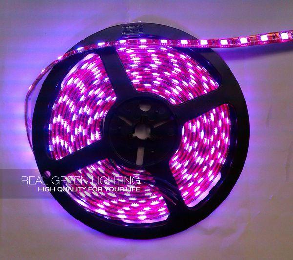25 best LED Neon Rope Light images on Pinterest