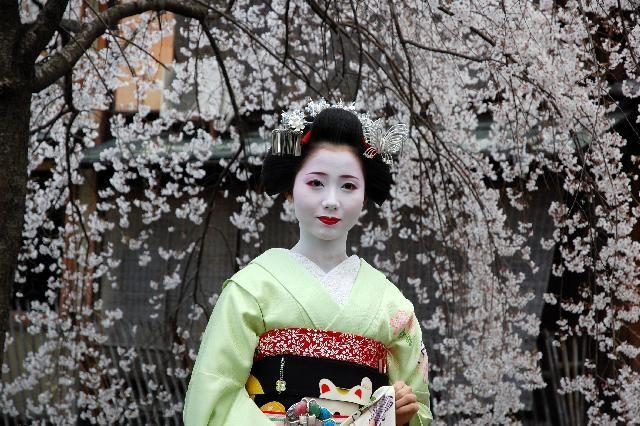 Maiko, Mamehana. Kyoto. Japan.