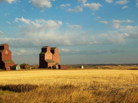 Grain Elevators Stand in a Prairie Ghost Town, Rowley ...