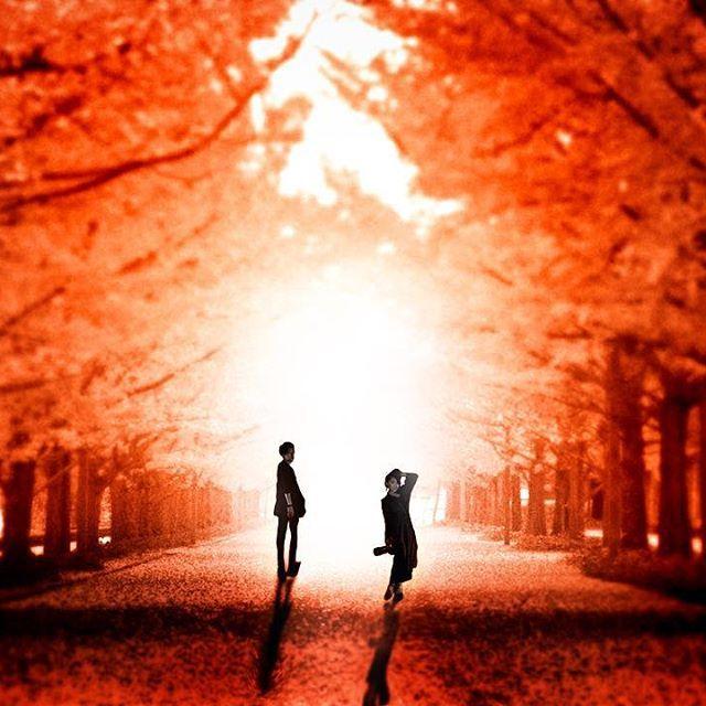 【02tykmmry13】さんのInstagramをピンしています。 《photography  #instagood#portrait #location#landscapes #canon##model#cool#instalike #morning sun#朝焼け #モノクロ#ポートレート#ロケーション#紅葉 #フィルム#クール#作品撮りフォローミー #写真撮ってる人と繋がりたい #写真好きな人と繋がりたい #キャノン#ふぁいんだー越しの私の世界#fairyart#ファンタジー#散歩道#森#forest#恋人#couple #逆光#秋》